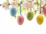 Blossoms & Easter Eggs