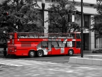 Tokyo red bus