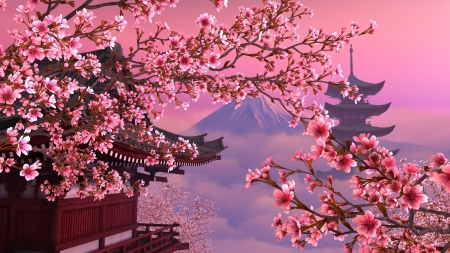 Sakura Cherry Blossoms Other Architecture Background