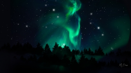 Northern Sky - forest, stars, northern lights, trees, sky, bright, aurora borealis, Firefox Persona theme, night