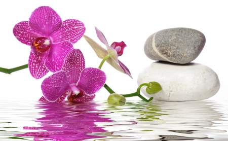 Spa wallpaper  Spa background - 3D and CG & Abstract Background Wallpapers on ...