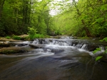 West Virginia_ stream