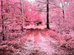 Pink Forests