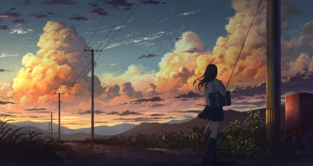 Cloudy Sunset - Road, Grass, Long Hair, Clouds, School Uniform, Sunset, Electrical Poles, Power Lines, Anime, Flowers, Plants, School Bag, Seifuku, Sky, Anime Girl, Mailbox, Mountains