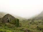 Ruins in Foggy Landscape of Ireland
