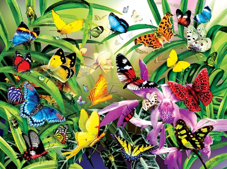 Butterflies - orchids, painting, flowers, colors, garden, spring, insects