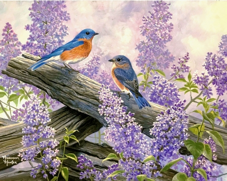 Spring Courting - lilacs, branch, songbirds, blossoms, birds, painting, artwork