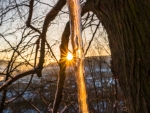 Sunset & Icicle