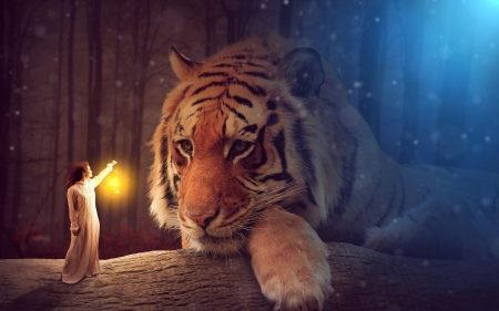 Big Friend - light, art, digital, girl, tiger, forest