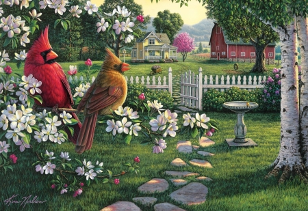 Cardinal in the Apple Blossoms - puzzle, female, blossoms, cardinals, red, fam, male, apple