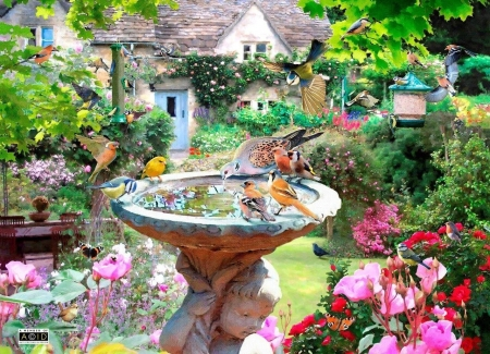 Summer Birds - puzzle, birds, summer, flowers, foutain, bath