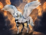 Enchanting Pegasus