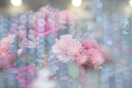 Pastel floral wallpaper - wallpaper, flowers, pastel, carnations, glimmer, light, floral