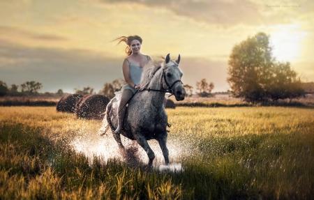 Horse rider wallpaper - photo#30