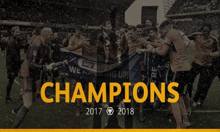 Champions 2018 Wolves FC - fc, wolves fc, championship, molineux, the wolves, wallpaper, english, out of darkness cometh light, football, wwfc, soccer, champions, england, wolverhampton wanderers football club, wolves football club, 2018, wolverhampton wanderers fc, fwaw, wolverhampton, screensaver, fans, gold and black, wolf, wolves, wanderers
