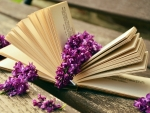 Book and lilacs