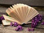 Book Hand Fan And Flowers