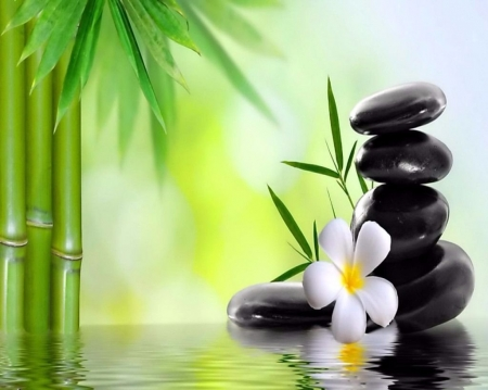 Bamboo Spa 3d And Cg Amp Abstract Background Wallpapers On