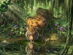 Tiger at The Watering Hole