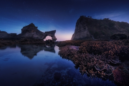 Coral Seascape on a Starry Night - Stars, Sea, Sky, Coral Reefs, Twilight, Rocks, Reflections, Nature
