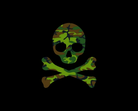 Camo Skull Other Abstract Background Wallpapers On