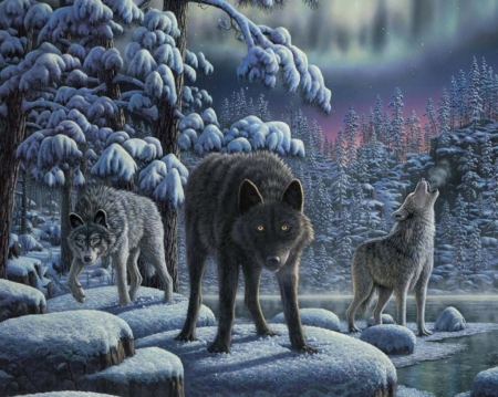 Wolves - luminos, blackm, howl, iarna, winter, fantasy, snow, trio, lup, painting, wolf, pictura, night