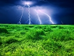 Lightning Storm Over The Wheat Field