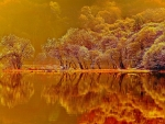 Mirror in the Lake at Sunset,