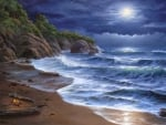 Romatic  Moonlit Beach