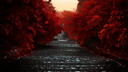 Honshu Island Japan Other Nature Background Wallpapers On