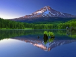 Reflecting Mount Hood