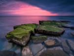 Twilight over Mossy Sea Boulders