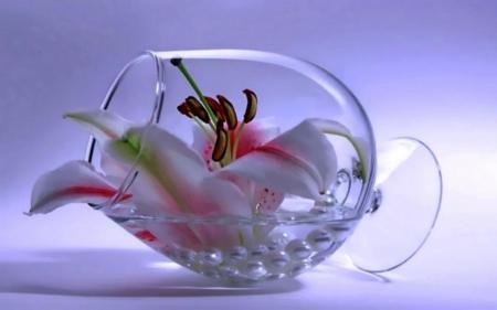 Beautiful Flowers Glass
