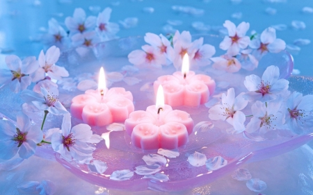 Candles And Cherry Flowers - Cherry, Pink, Candles, Flowers