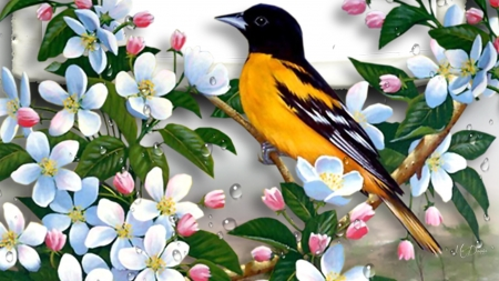 Bright Spring Bird - sakura, spring, buds, tree, bird, bright, flowers, blossoms, Firefox Persona theme