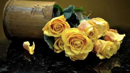 Yellow Roses - still life, table, reflection, roses, yellow