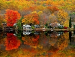 Lakeside Cottage in Autumn