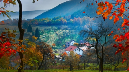 Houses Surrounded By Trees - bosnia, autumn, leaves, mountains, houses, village, nature, trees
