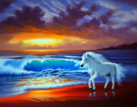 White Horse - colors, beach, sea, sunset, sky, clouds, painting, artwork