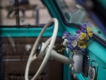 Flowers in the old car