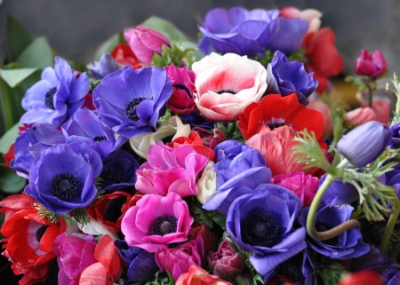 Anemones Bouquet - colorful, bright, beauty, bouquet, flowers, spring, summer