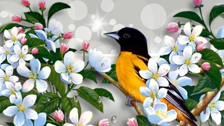 Spring Summer Birds - sakura, spring, cherry blossoms, apple blossoms, bokeh, bird, blossoms, bright, flowers, Firefox Persona theme