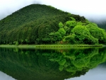 Reflecting Green Lake With Mountain