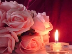 Candlelight and pink Roses