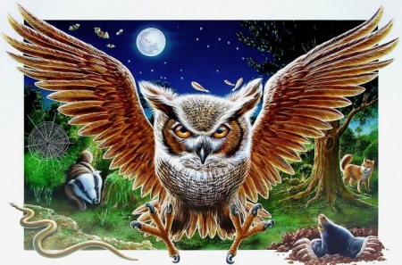 Tawny Owl - art, mole, moon, wings, fox, bird, raptor, night
