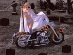 The Ripper of Harley Davidson