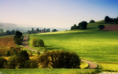 Lush  field - rural, quality, green, grass, lush, nature, field