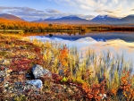 AUTUMN from ABISKO NATIONAL PARK