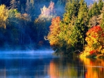 Misty River In Autumn