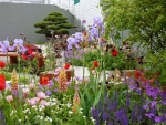 An exhibit at Chelsea Flower Show
